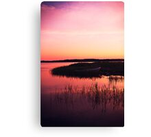 Because You're Beautiful. Canvas Print