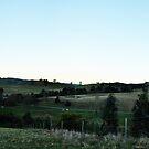 Strath Creek Panorama by Luke Donegan