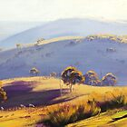 Megalong Valley by Graham Gercken