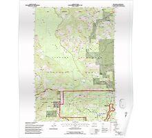 USGS Topo Map Washington State WA Willard 244716 1994 24000 Poster