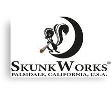 Skunk Works Canvas Print