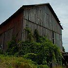 Abandoned Barn - Angle by Elizabeth Carpenter