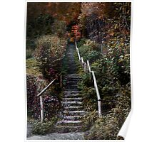 Romantic pathway in fall Poster