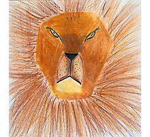 Drawing of lion by a child Photographic Print