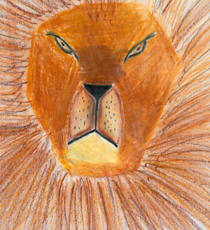 Drawing of lion by a child Sticker