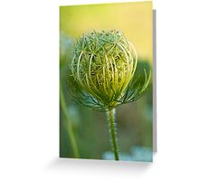 Nature's Abstract 3 Greeting Card
