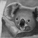A koala in pencil by agenttomcat