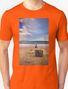 Posts in the sand Unisex T-Shirt