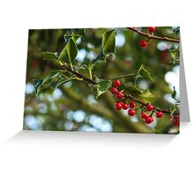 Holly Bokeh Greeting Card