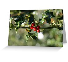 Holly Bokeh 2 Greeting Card