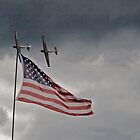 Gliders salute Old Glory by StantonP
