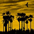 """...""""boiling over bubbling up""""....(Venice Beach sunset, California) by Russ Styles"""
