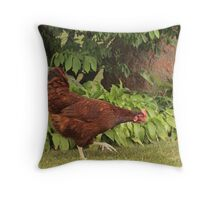 Red Rock Chicken Throw Pillow