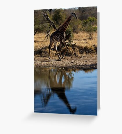 Tall Reflection Greeting Card