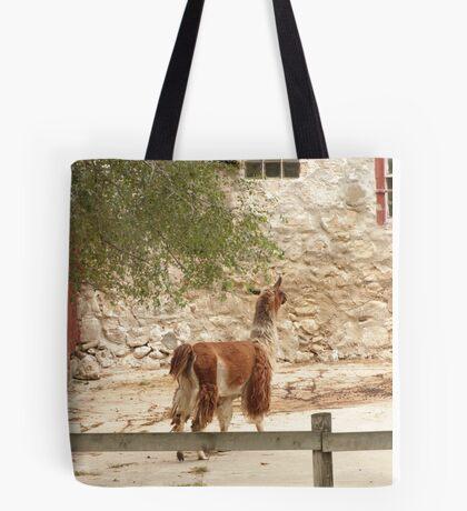 Llama in Courtyard Tote Bag