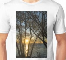 Golden Willow Sunrise Unisex T-Shirt