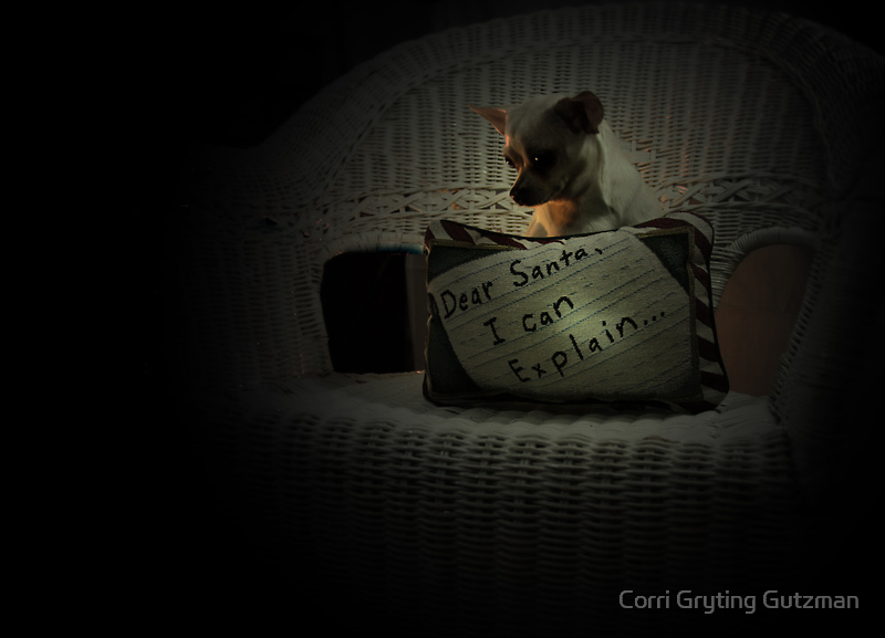 Chihuahua and the Message to Santa by Corri Gryting Gutzman