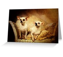 Chihuahua and the Friendship Message Greeting Card