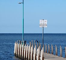 Safety Bay Jetty by kalaryder