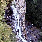 Leura cascade by William Goschnick