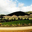 Strath Creek Panorama #2 by Luke Donegan