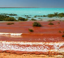 The red sea by Robyn Lakeman