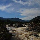 Snowy River NSW HDR #2 by Matt  Carlyon