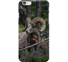 Big Horn iPhone Case/Skin