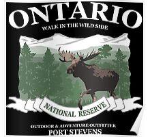Ontario moose Poster