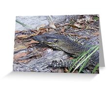 Lace in the bush. Lace Monitor - Varanus varius Greeting Card