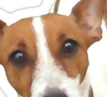 Roxy Jack Russell Rescue Tee Shirt Sticker