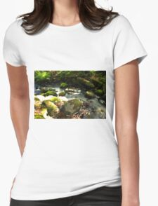 The unidentified stream in Hillerstorp IV Womens Fitted T-Shirt