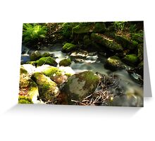 The unidentified stream in Hillerstorp IV Greeting Card