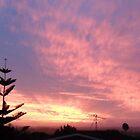 New Zealand Sunset by Darren Bale