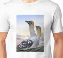 Two Gannets Shetland Isles T-Shirt