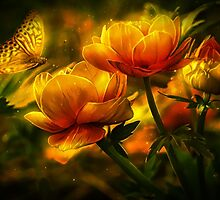 Butterfly and flowers by franceslewis