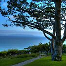 Rancho Palos Verdes Ocean View by K D Graves Photography