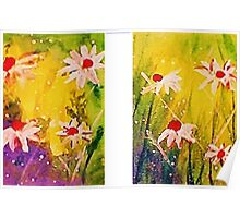 2 Daisy pictures, watercolor Poster
