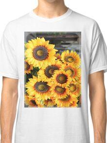 Sunflowers in Cortona, Tuscany, Italy Classic T-Shirt