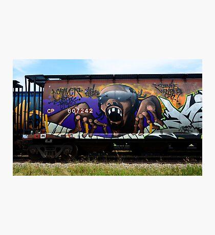 Graffiti Genius 1 Photographic Print