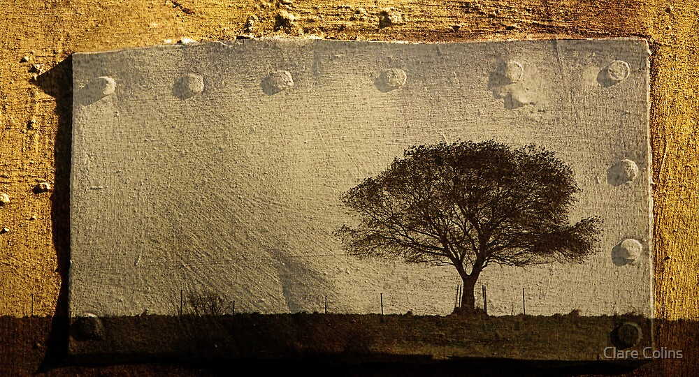 my tree - my serenity by Clare Colins