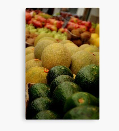 Melon Canvas Print