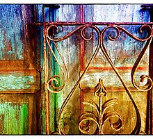 Wrought Iron Rails and Wooden Door by David J Baster