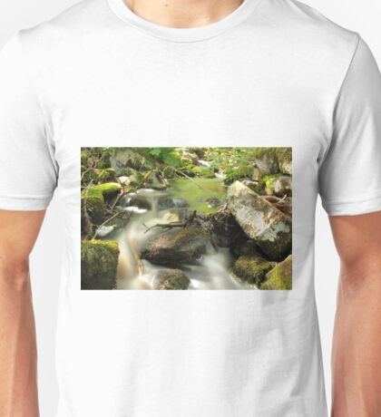 The unidentified stream in Hillerstorp II T-Shirt