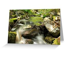 The unidentified stream in Hillerstorp II Greeting Card