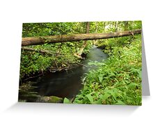 The unidentified stream in Hillerstorp III Greeting Card