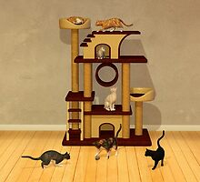 Got Cats by Liam Liberty