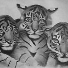 Three tigers in pencil by agenttomcat