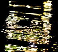 Army Duck by Rhoufi