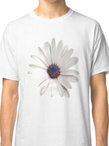 White Daisy Isolated On White Classic T-Shirt